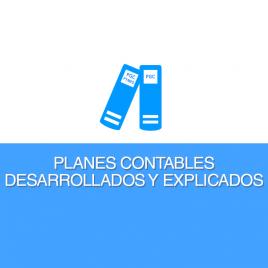 PLANES DE CUENTAS: PGC Y PGCPYMES