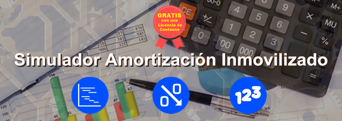 Simulador Amortización Inmovilizado